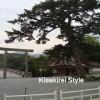 【その3】風は吹く April 30, 2013