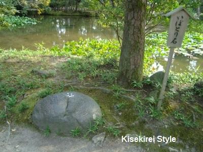 金沢神社いぼとり石