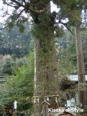 丹生川上神社中社4