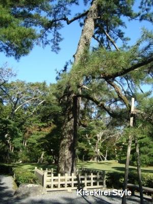 201210内宮4