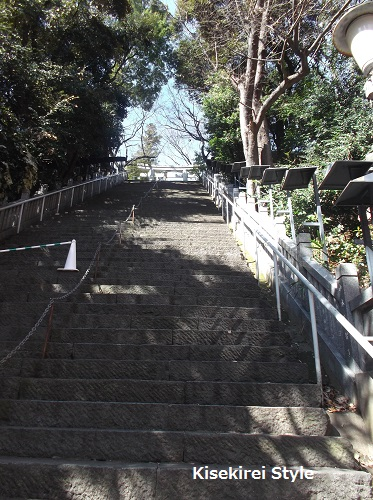 就活にもご利益あり?愛宕神社で出世の階段を登ってきた