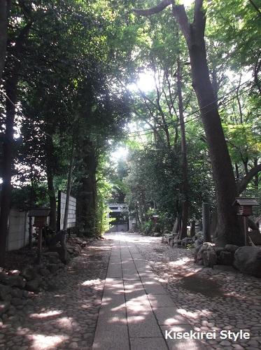 7月代々木八幡宮10