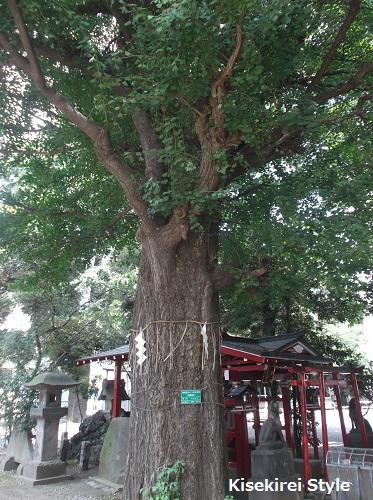 花園神社7