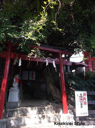 代々木八幡宮 例大祭2014-13