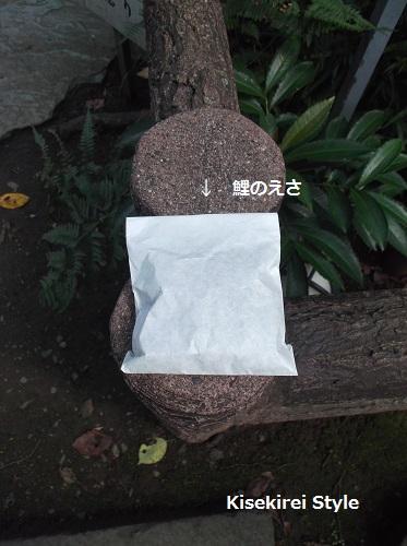愛宕神社H26.9-23