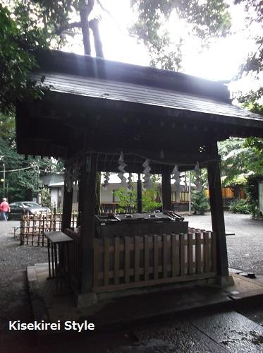 yoyogihachiman6