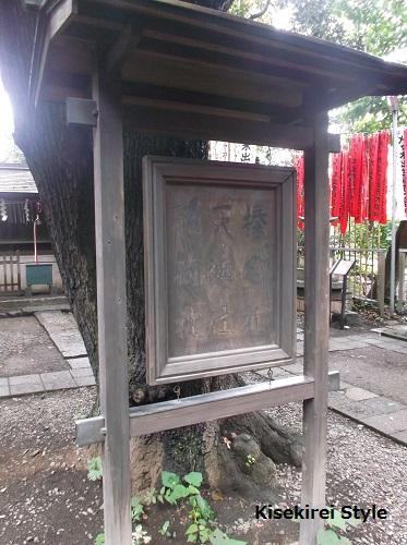 yoyogihachiman8