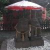 夫婦狛犬がカワイイ、浅草神社に行ってみた。
