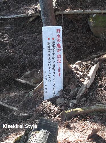 大山阿夫利神社本社2-34