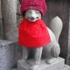 伏見稲荷大社お山めぐり~不思議な猫さんと遭遇