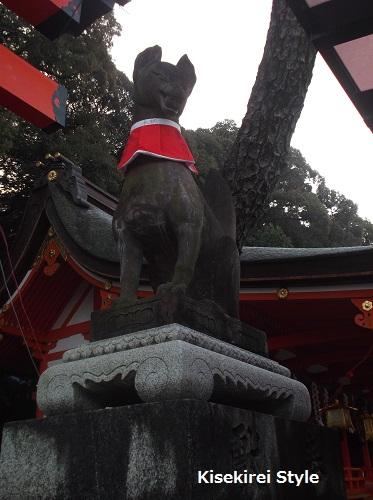 201412-1伏見稲荷18
