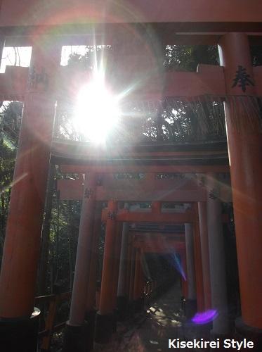 201412伏見稲荷大社3-31