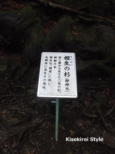 貴船神社奥社30