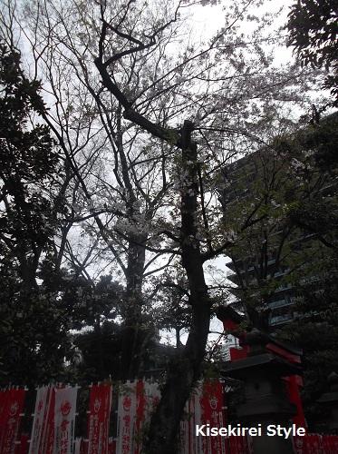 201504豊川稲荷東京別院3