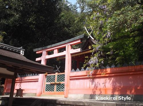 201505-kasugataisha2-13