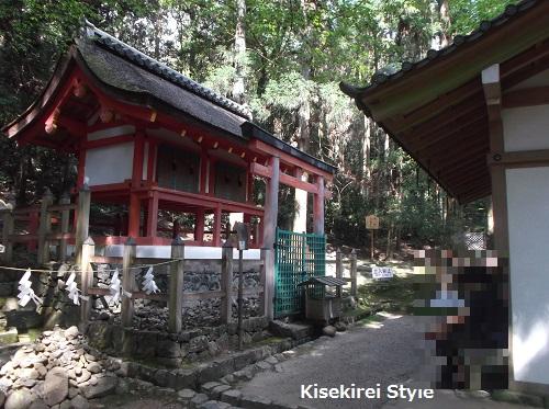 201505-kasugataisha2-33