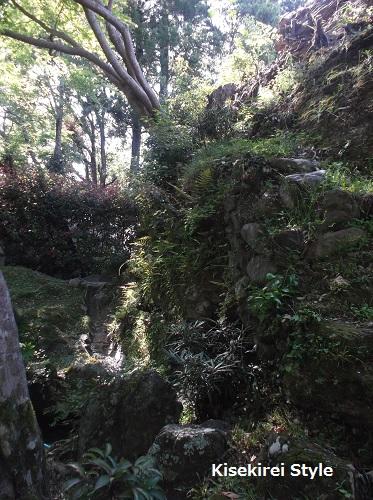 201505yoshimizu22