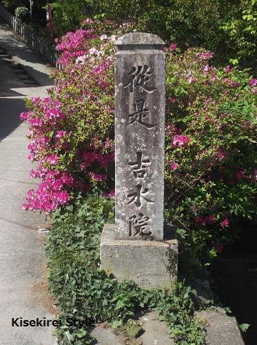 201505yoshimizu3