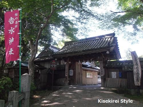 201505yoshimizu7