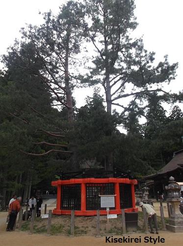 20150504高野山壇上伽藍22