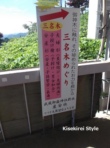 武蔵御嶽神社・産安社 9