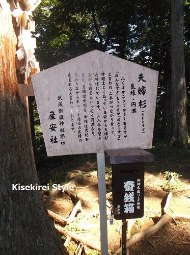武蔵御嶽神社・産安社 14