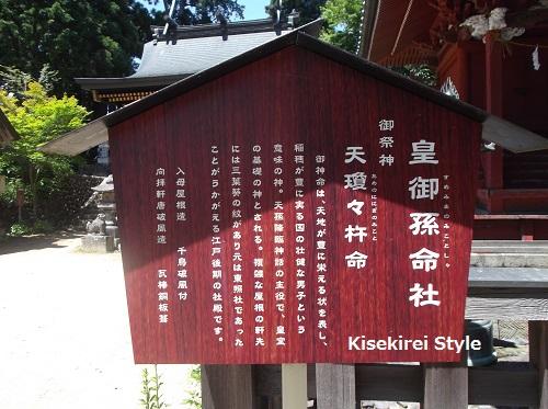 武蔵御嶽神社玉垣31