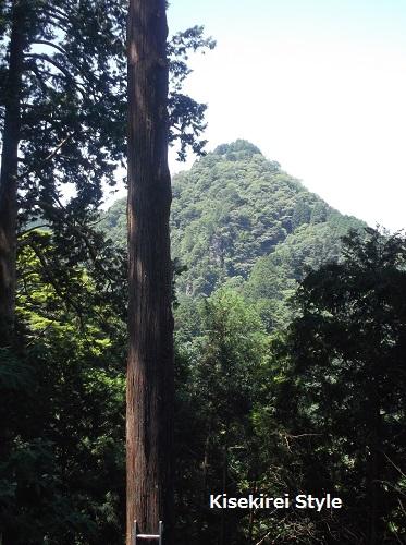 武蔵御嶽神社玉垣14