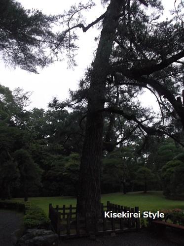 201507伊勢神宮内宮5