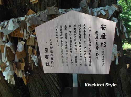 武蔵御嶽神社・産安社 19