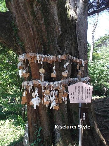 武蔵御嶽神社・産安社 20