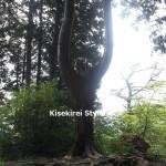 武蔵御嶽神社・奥の院へ再び行ってきた
