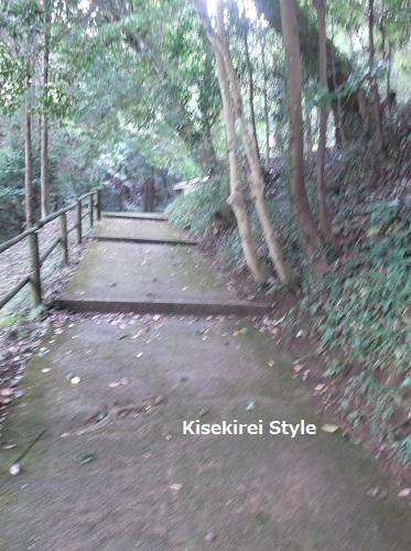 神魂神社#2-6