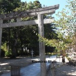 リアルな大杉さんの木精~須佐神社にお伺いしました