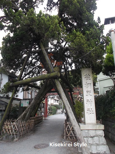 荏柄天神社1