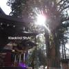 ここをパワースポットと呼ばすして何と呼ぶ~三峯神社にお伺いしました【その2】