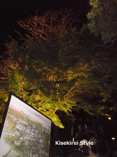 長谷寺鎌倉夜間3