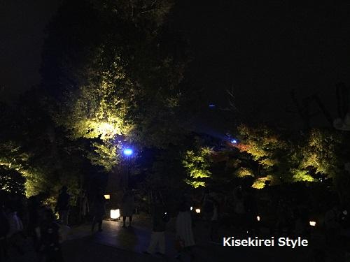 長谷寺鎌倉夜間18