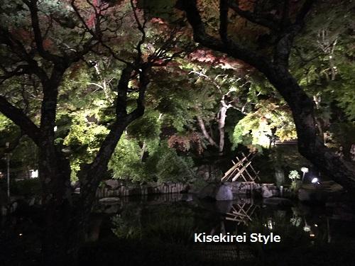 長谷寺鎌倉夜間29