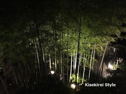 長谷寺鎌倉夜間15