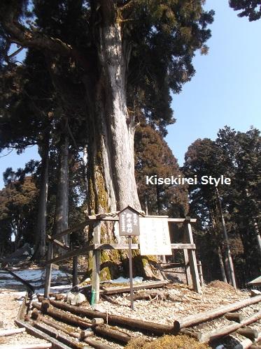 身延山ハイキング東コース6