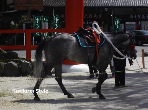上賀茂神社(賀茂別雷神社)4