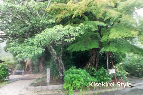 高天彦神社12