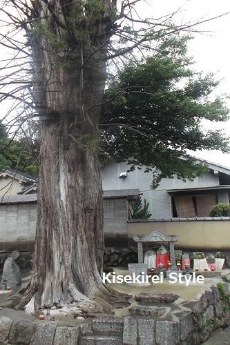 鴨山口神社7