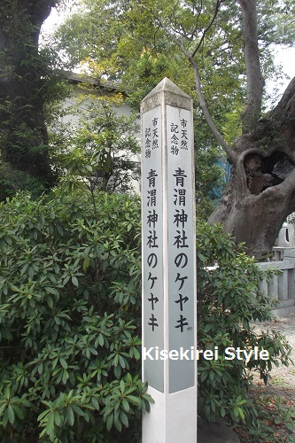 青渭神社3