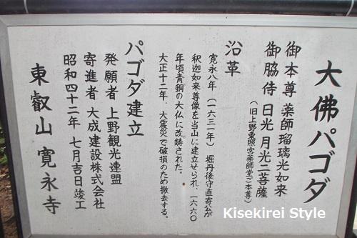 寛永寺上野大仏5