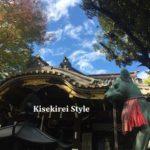 とても綺麗な豊川稲荷東京別院の限定御朱印帳と御朱印帳袋